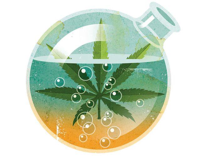Was ist THC Öl und wofür wird es verwendet?